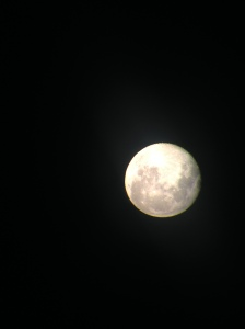 Took this one of the moon through a telescope