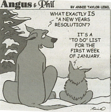 Funny-New-Year-Resolution-09